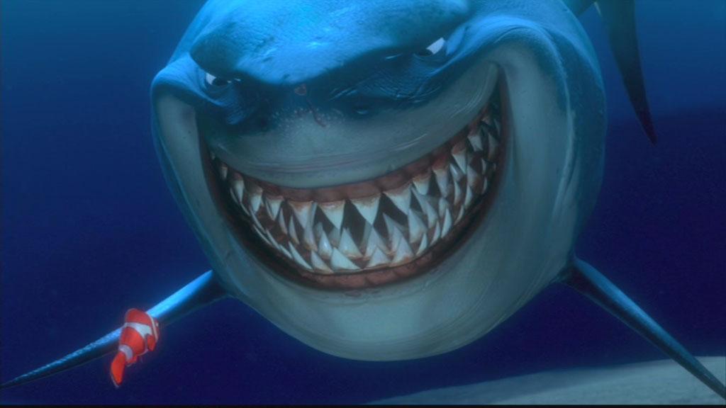 """""""Enigma...lo spazio dello squalo!"""" Squalo-shark"""